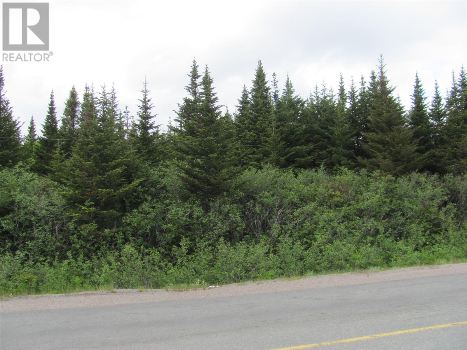 301-307 John Cabot Drive, Bonavista, Newfoundland & Labrador  A0C 1B0 - Photo 2 - 1198494