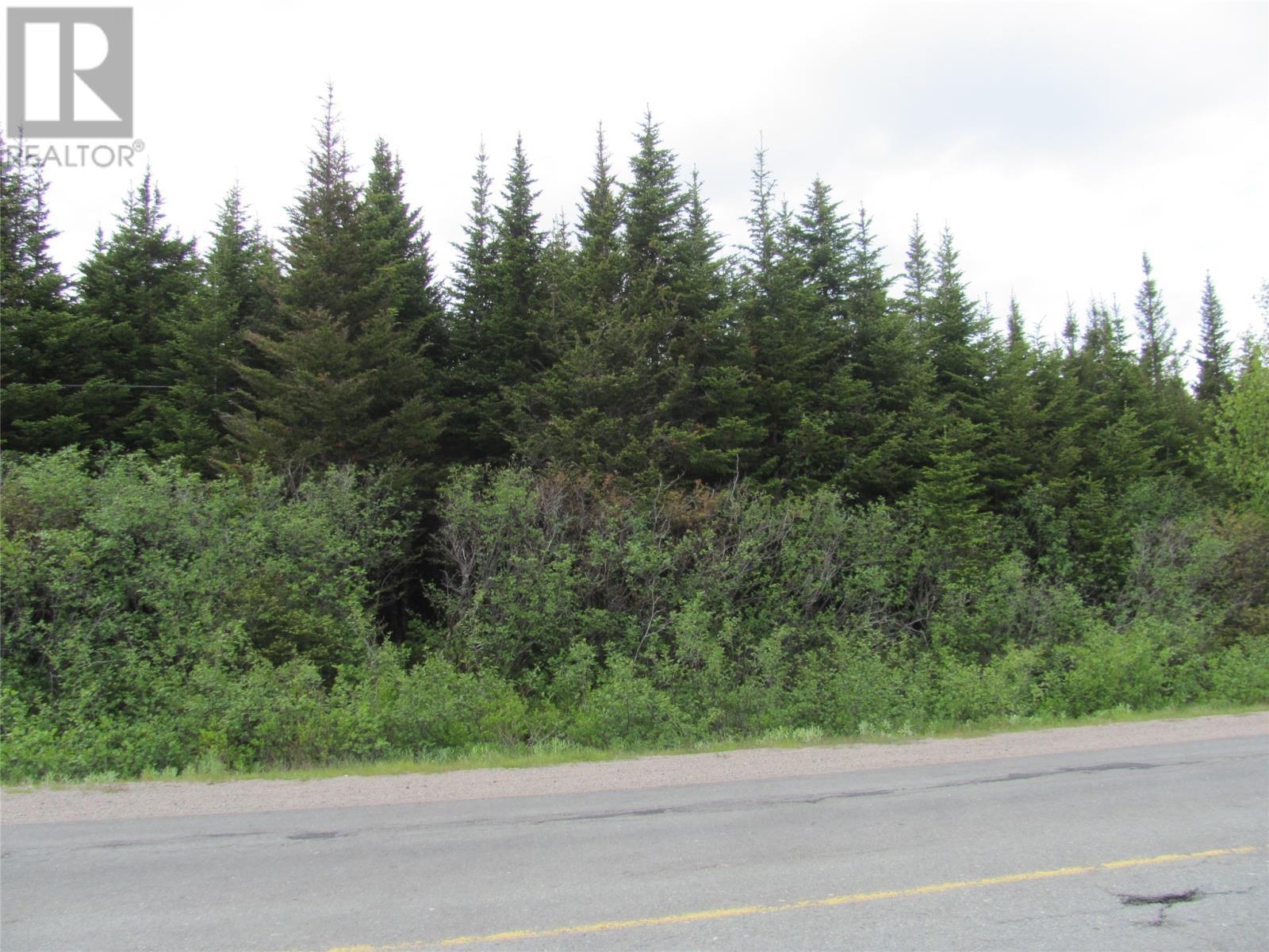301-307 John Cabot Drive, Bonavista, Newfoundland & Labrador  A0C 1B0 - Photo 3 - 1198494