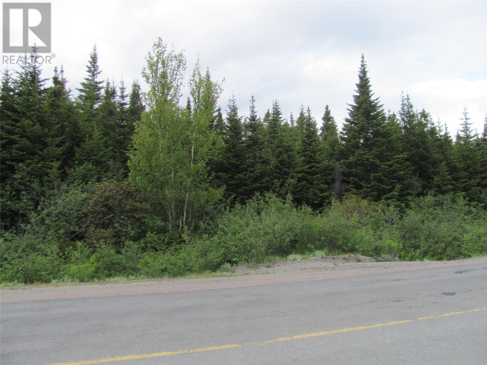 301-307 John Cabot Drive, Bonavista, Newfoundland & Labrador  A0C 1B0 - Photo 4 - 1198494