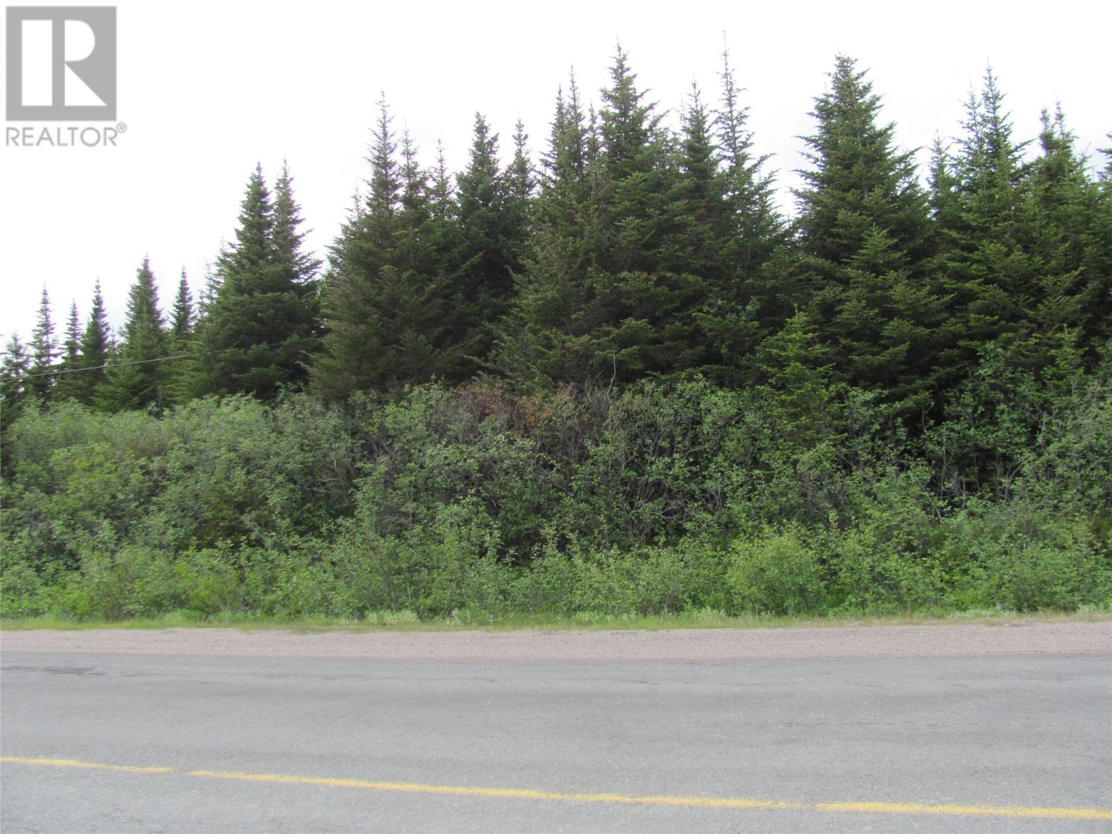 301-307 John Cabot Drive, Bonavista, Newfoundland & Labrador  A0C 1B0 - Photo 5 - 1198494