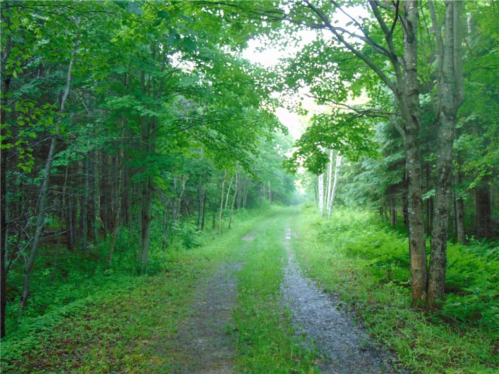 94-1 Route 108, Renous, New Brunswick  E9E 2M7 - Photo 2 - NB028409