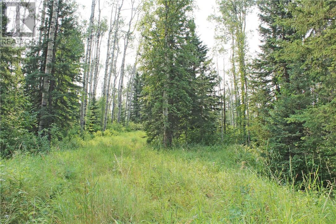 5 Sandhills Drive, Rural Clearwater County, Alberta  T4T 2A4 - Photo 1 - ca0158926