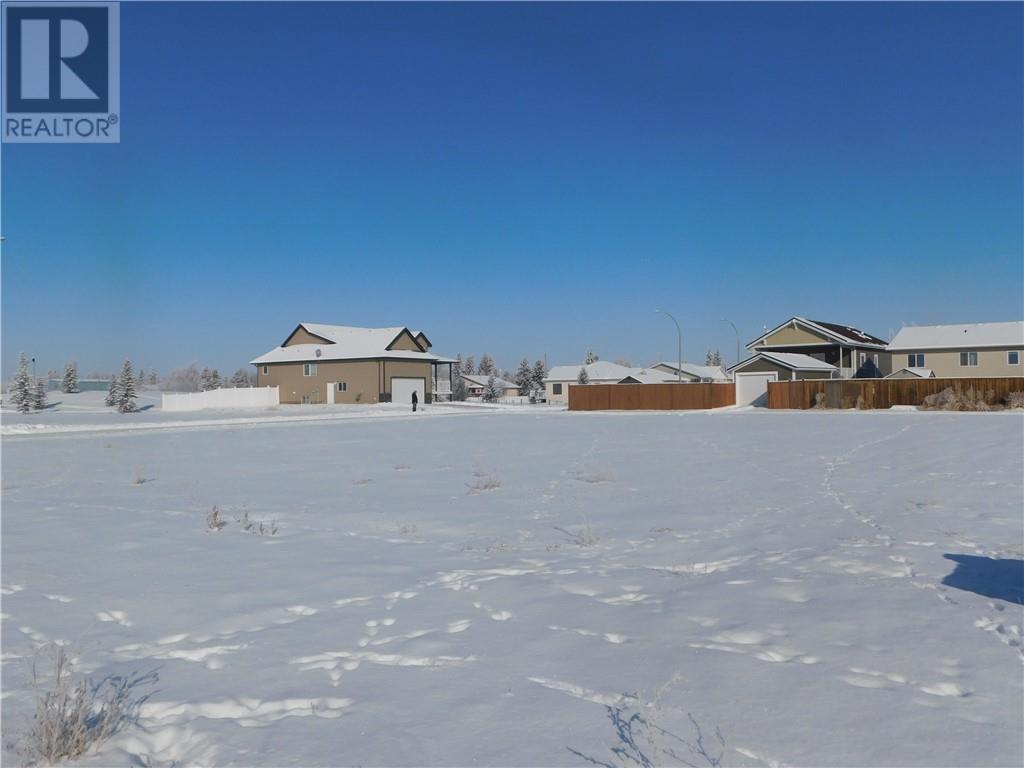 400 Howe Avenue E, Duchess, Alberta  T0J 0Z0 - Photo 4 - SC0158141