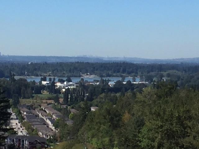 10101 247 Street, Maple Ridge, British Columbia  V0V 0V0 - Photo 2 - R2162827