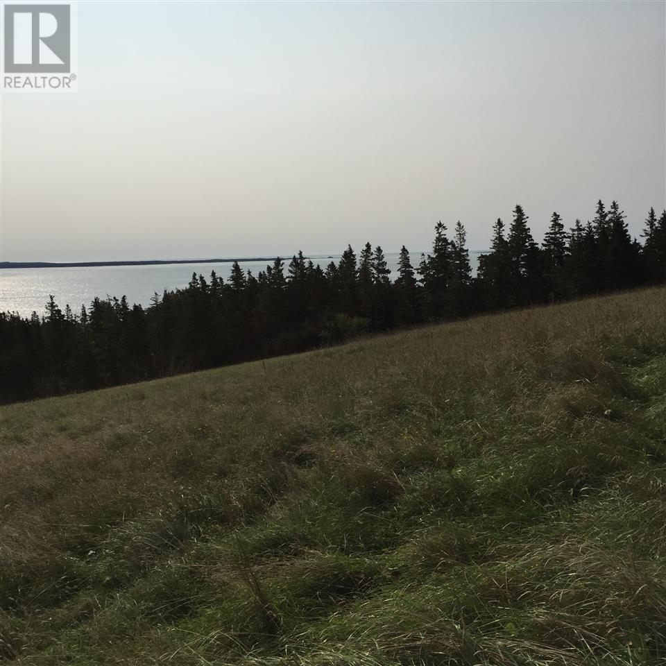 280 Green Bay Road, Green Bay, Nova Scotia  B4V 6N8 - Photo 6 - 201507290
