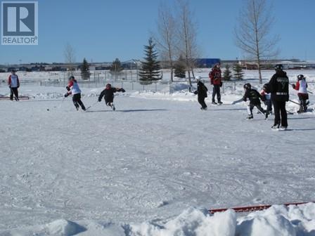 4745 Aspen Lakes Boulevard, Blackfalds, Alberta  T0C 0Y0 - Photo 5 - CA0192582
