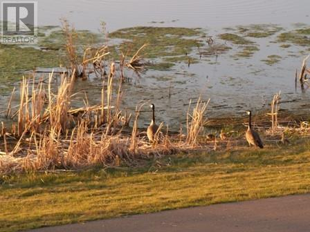 4762 Aspen Lakes Boulevard, Blackfalds, Alberta  T0C 0Y0 - Photo 4 - CA0192584