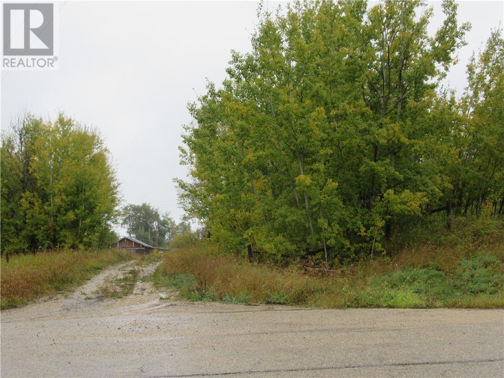 6413 Highway 757, Birch Cove, Alberta  T0E 0V0 - Photo 3 - CA0191502