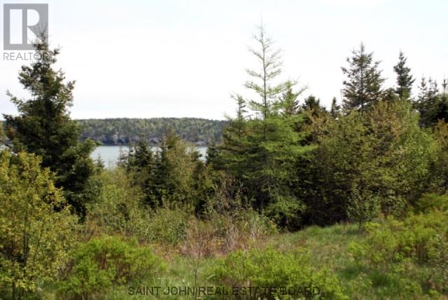Lot 10-06 Golden Mile Drive, Grand Manan, New Brunswick  E5G 1N1 - Photo 6 - SJ150771