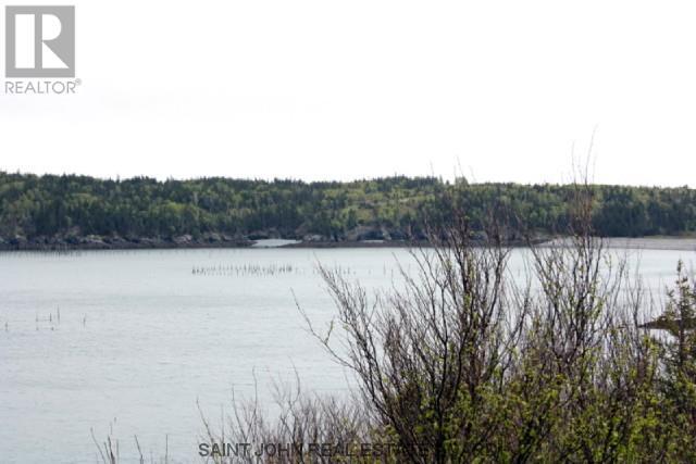 Lot 10-05 Golden Mile Drive, Grand Manan, New Brunswick  E5G 1N1 - Photo 5 - SJ150770