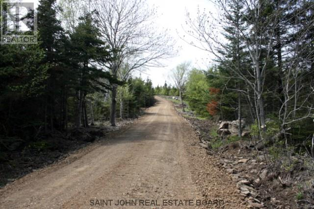 Lot 10-05 Golden Mile Drive, Grand Manan, New Brunswick  E5G 1N1 - Photo 9 - SJ150770