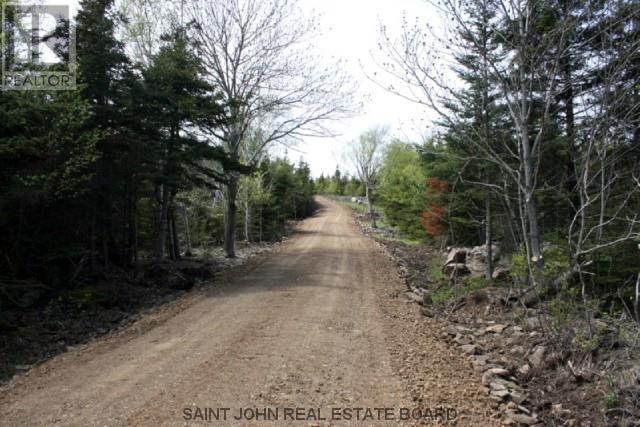 Lot 10-04 Golden Mile Drive, Grand Manan, New Brunswick  E5G 1N1 - Photo 9 - SJ150769