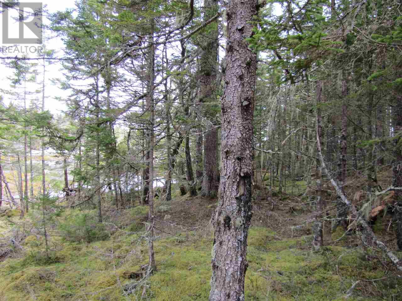 Lot 5 Hirtle Island, Lahave Islands, Nova Scotia  B0R 1C0 - Photo 25 - 201911548