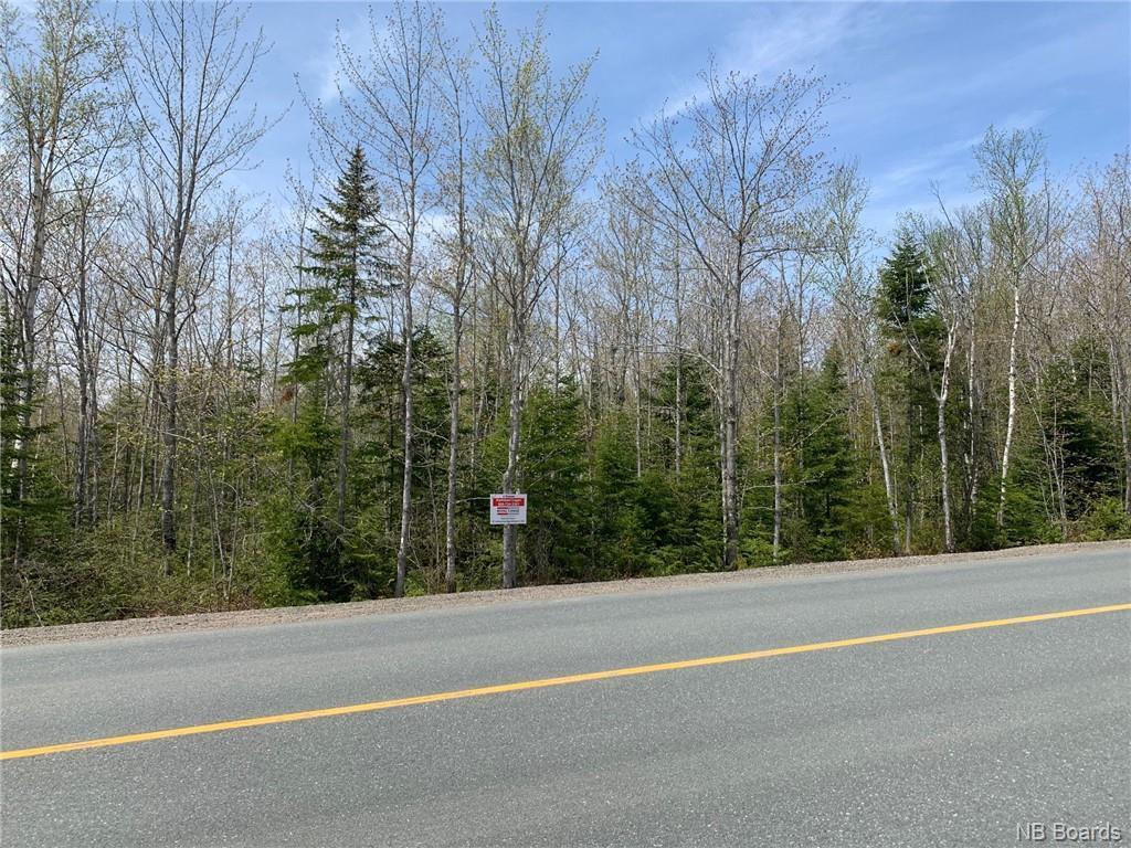 - Principale, Petit-Paquetville, New Brunswick  E8R 1G4 - Photo 3 - NB043867