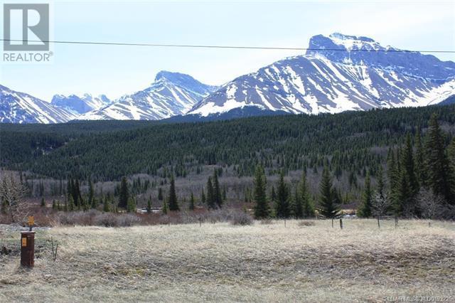 3602 18 Avenue, Rural Crowsnest Pass, Alberta  T0K 0M0 - Photo 1 - LD0193225