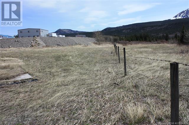 3602 18 Avenue, Rural Crowsnest Pass, Alberta  T0K 0M0 - Photo 7 - LD0193225