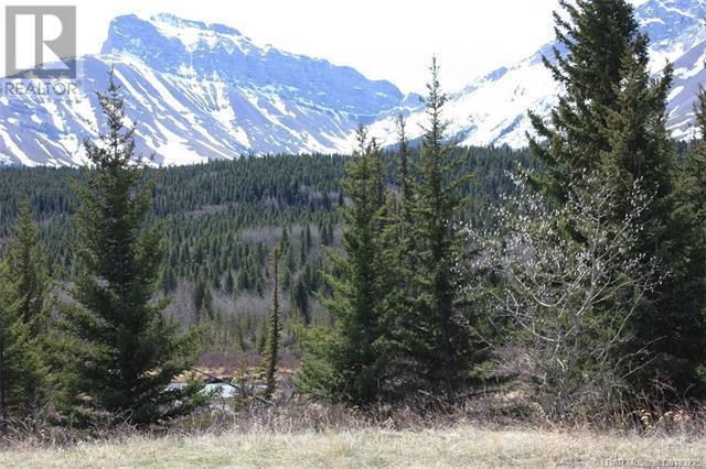 3602 18 Avenue, Rural Crowsnest Pass, Alberta  T0K 0M0 - Photo 10 - LD0193225