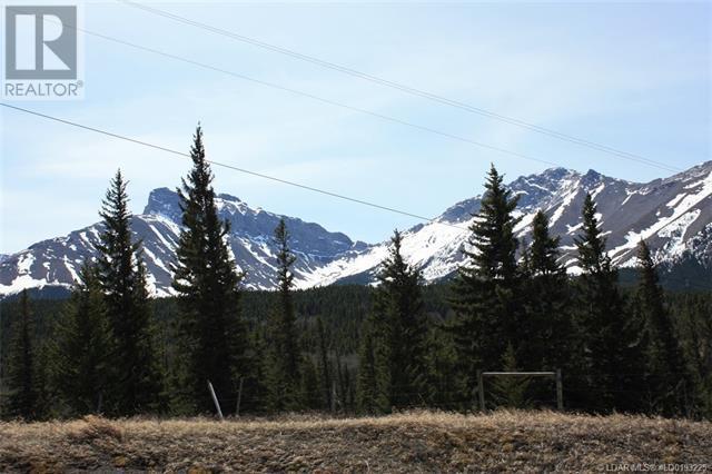 3602 18 Avenue, Rural Crowsnest Pass, Alberta  T0K 0M0 - Photo 11 - LD0193225