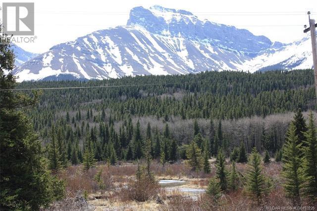 3602 18 Avenue, Rural Crowsnest Pass, Alberta  T0K 0M0 - Photo 5 - LD0193225