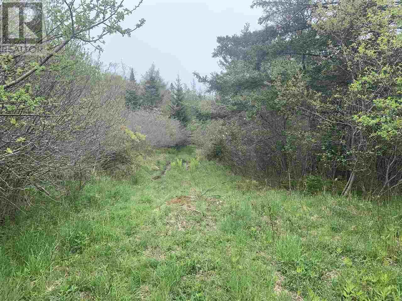 0 Chemin Des Ben Road, Sluice Point, Nova Scotia  B0W 3M0 - Photo 3 - 202008892