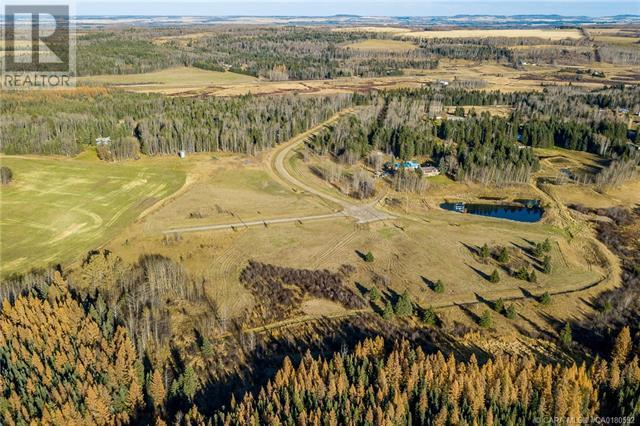 122 Blueberry Meadows Lane, Rural Clearwater County, Alberta  T0M 1H0 - Photo 21 - CA0180592