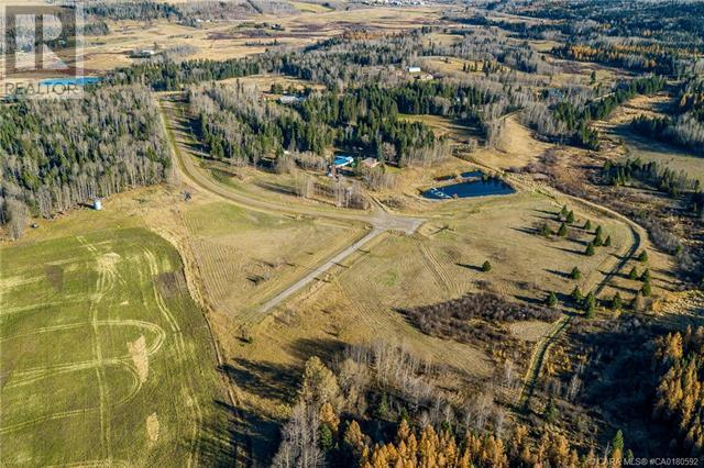 122 Blueberry Meadows Lane, Rural Clearwater County, Alberta  T0M 1H0 - Photo 22 - CA0180592