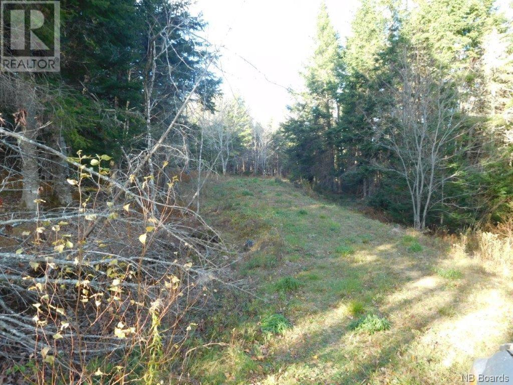 - Lakefield Road, Poodiac, New Brunswick  E4E 3R3 - Photo 6 - NB015125