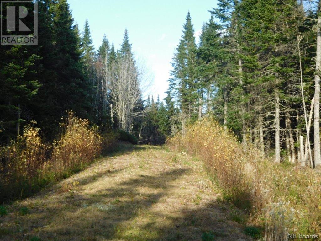 - Lakefield Road, Poodiac, New Brunswick  E4E 3R3 - Photo 2 - NB015125
