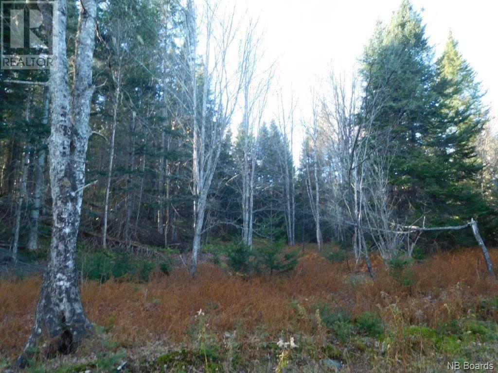 - Lakefield Road, Poodiac, New Brunswick  E4E 3R3 - Photo 7 - NB015125