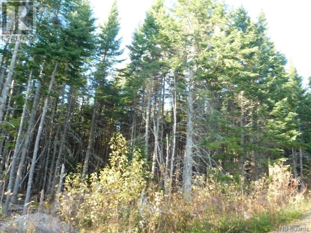 - Lakefield Road, Poodiac, New Brunswick  E4E 3R3 - Photo 4 - NB015125