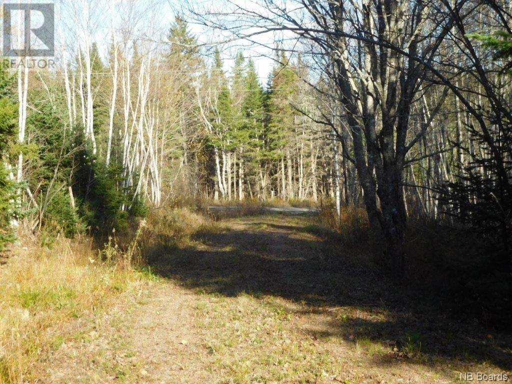 - Lakefield Road, Poodiac, New Brunswick  E4E 3R3 - Photo 10 - NB015125