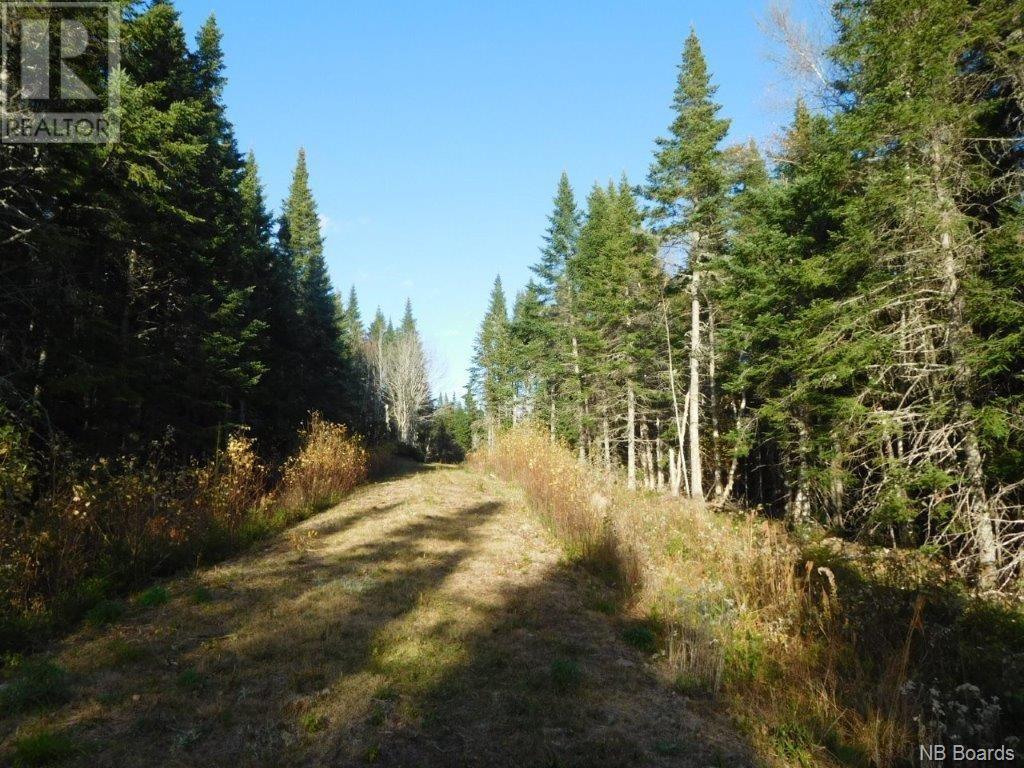- Lakefield Road, Poodiac, New Brunswick  E4E 3R3 - Photo 1 - NB015125