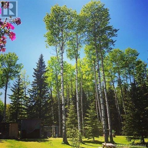 304 Eagle Ridge Crescent, Caroline, Alberta  T0M 0M0 - Photo 4 - CA0191514