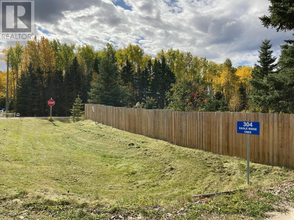 304 Eagle Ridge Crescent, Caroline, Alberta  T0M 0M0 - Photo 31 - CA0191514