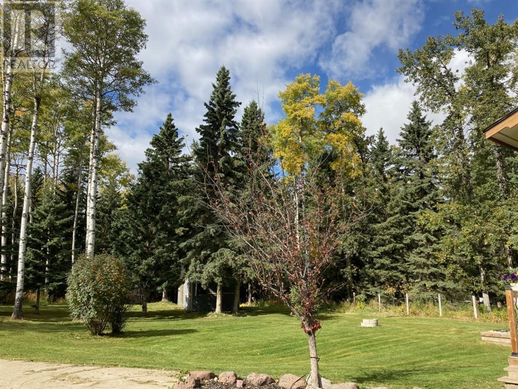 304 Eagle Ridge Crescent, Caroline, Alberta  T0M 0M0 - Photo 34 - CA0191514