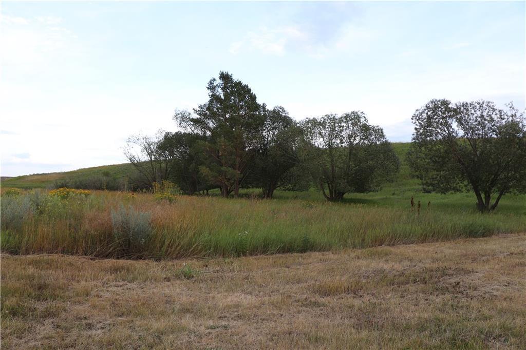 253017 Rr 253, Rural Wheatland County, Alberta  T1P 1J6 - Photo 10 - C4263502