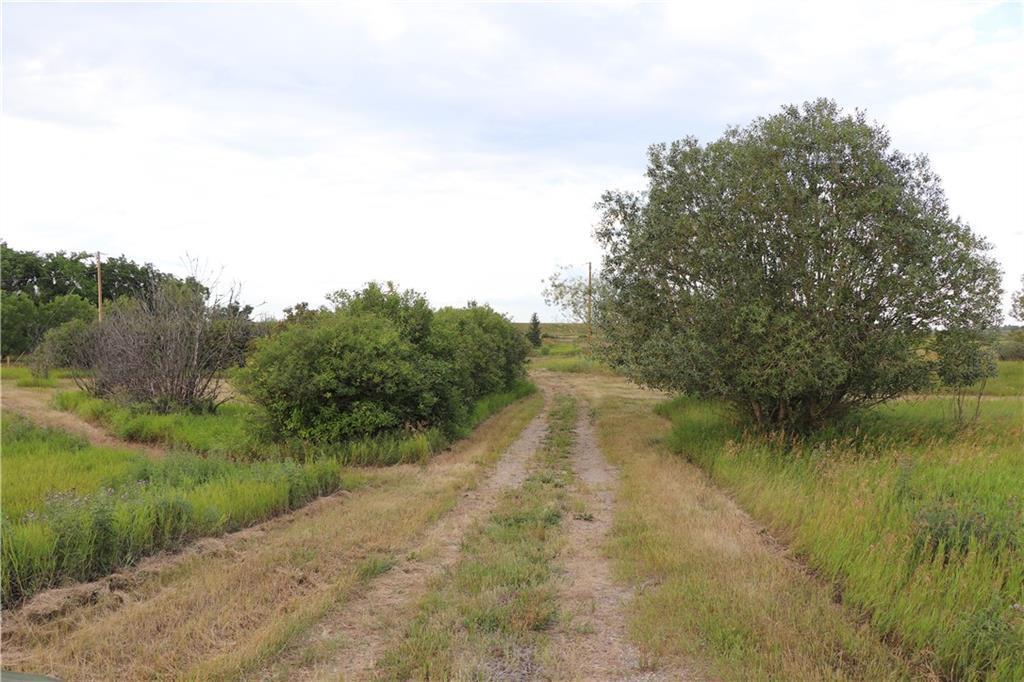 253017 Rr 253, Rural Wheatland County, Alberta  T1P 1J6 - Photo 6 - C4263502