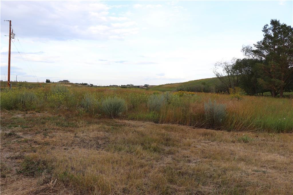 253017 Rr 253, Rural Wheatland County, Alberta  T1P 1J6 - Photo 7 - C4263502