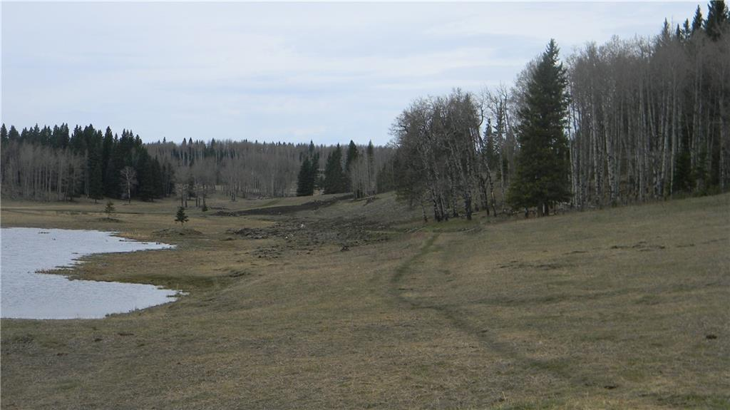 Corner Of 178 Ave & 320 St W, Rural Foothills County, Alberta  T0L 1W0 - Photo 20 - C4295343