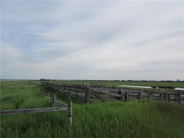 250 Range Rd, Rural Wheatland County, Alberta  T1P 1J6 - Photo 4 - C4302878