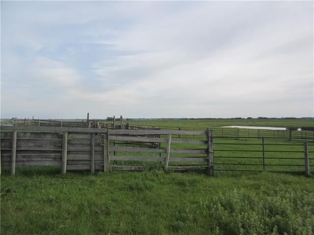250 Range Rd, Rural Wheatland County, Alberta  T1P 1J6 - Photo 6 - C4302878