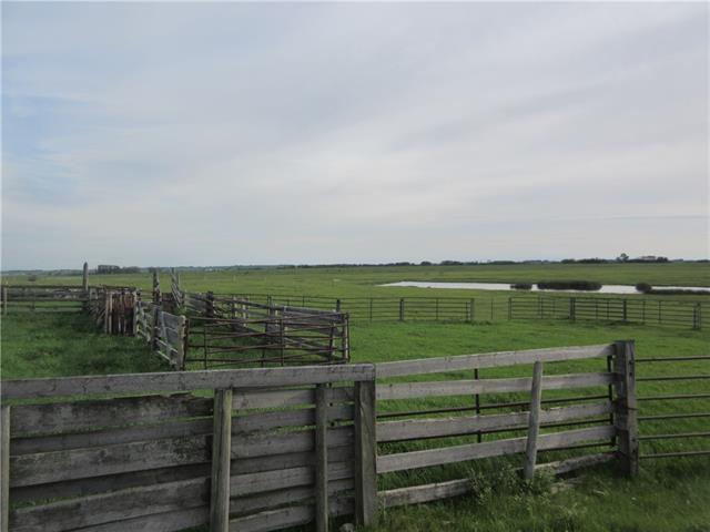 250 Range Rd, Rural Wheatland County, Alberta  T1P 1J6 - Photo 7 - C4302878