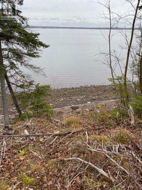 0 0 Abercombie Road, Granton, Nova Scotia  B2H 5C6 - Photo 3 - 202000645