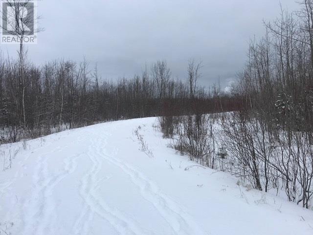 0 0 Abercombie Road, Granton, Nova Scotia  B2H 5C6 - Photo 4 - 202000645