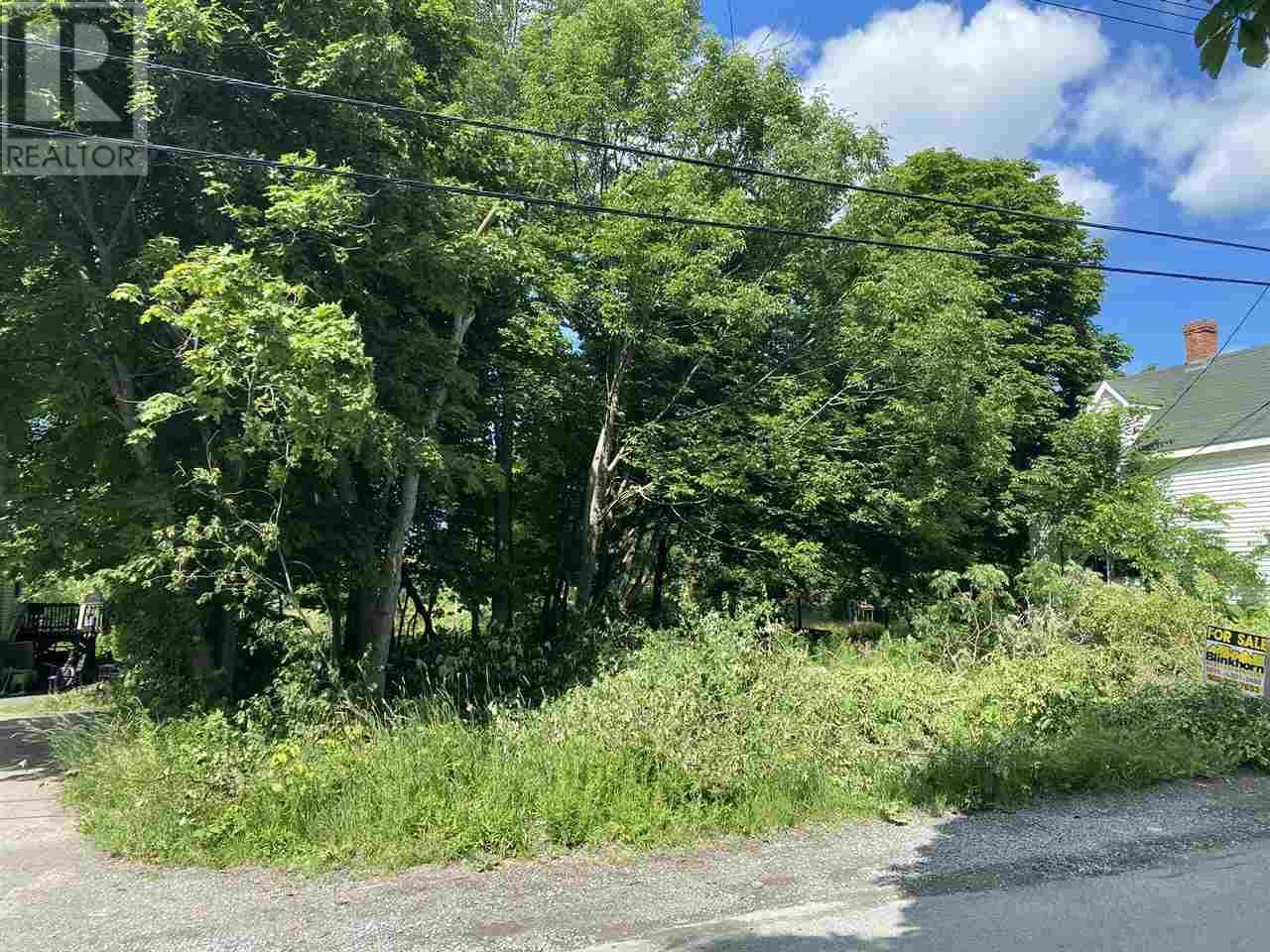 Lot North Street, Westville, Nova Scotia  B0K 2A0 - Photo 1 - 202012391