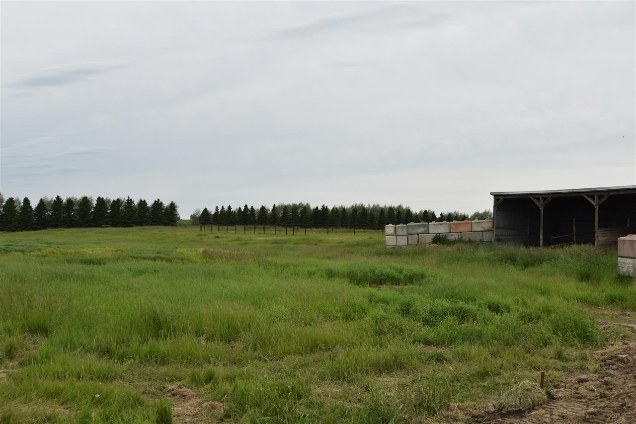 10304 Highway 29, Rural St. Paul County, Alberta  T0A 3A0 - Photo 27 - E4205330