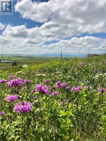 - 4 Street W, Hill Spring, Alberta  T0K 1E0 - Photo 1 - LD0173248