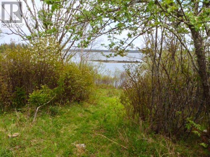 Lot West Green Harbour, West Green Harbour, Nova Scotia  B0T 1L0 - Photo 4 - 201817840