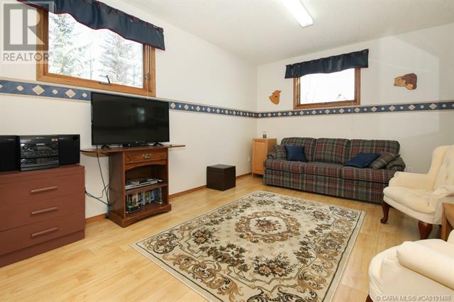 801 10 Avenue Ne, Three Hills, Alberta  T0M 2A0 - Photo 30 - CA0191488