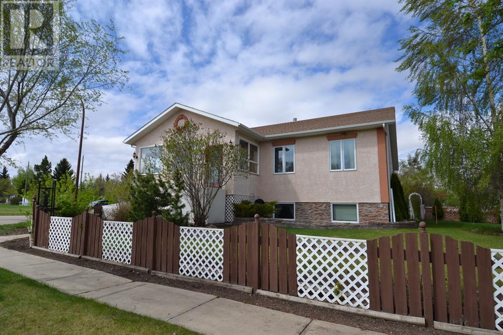 801 10 Avenue Ne, Three Hills, Alberta  T0M 2A0 - Photo 5 - CA0191488